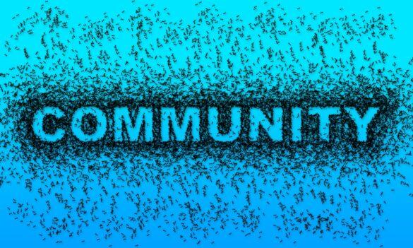 Robert Kurzban Community